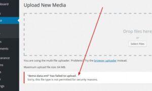 WordPress güvenlik nedeniyle dosya türüne izin verilmiyor