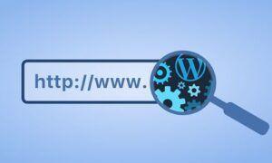 WordPress sitenin tema ismini bulma