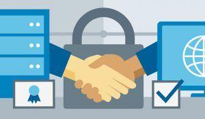 Web Sitesi için Doğru SSL Sertifikası Nasıl Seçilir?
